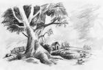 Peisaj cu copac si casa